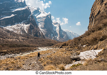 solo, montagna, donna, trekking