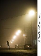 solo, nebbioso, donna, strada
