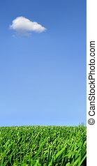 solo, nube