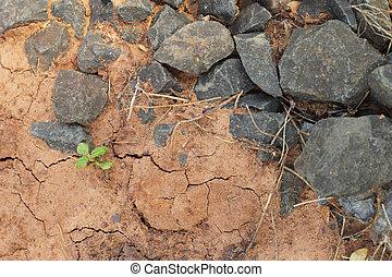 solo, pedra, -