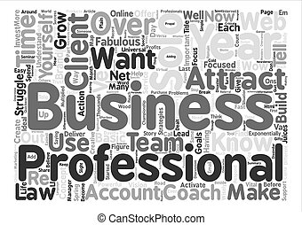 Solo professionals Where s your road map to success text background word cloud concept