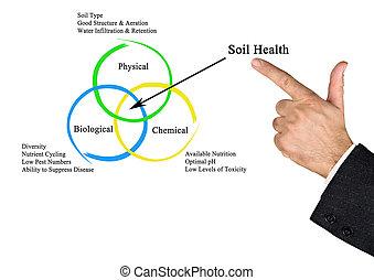 solo, saúde
