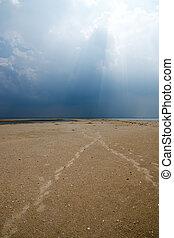 solo, su, il, spiaggia.