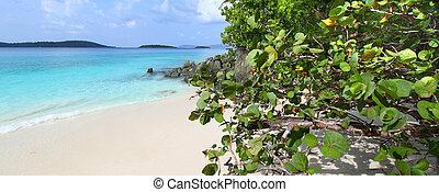 Solomon Beach on Saint John