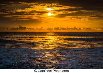 solopgang, hen, ocean atlantiskere ocean, ind, naragtighed, strand, syd, carolina.
