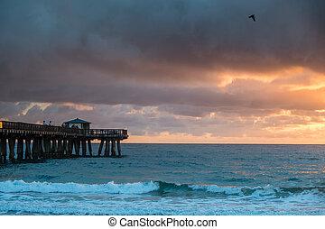 solopgang, hen, ocean., regn