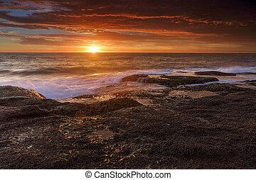 solopgang, hos, coogee, australien