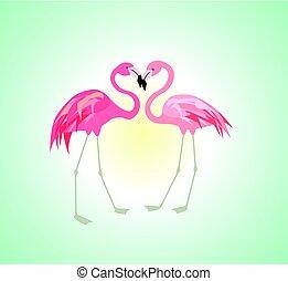 solopgang, hos, par, i, lyserød flamingo