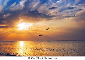 solopgang, på havet