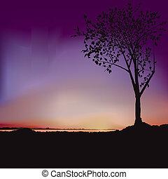 solopgang, -, træ, og, sø