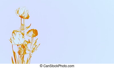 Solorized Flowers on White Background