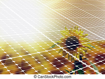 solros, och, solar panel