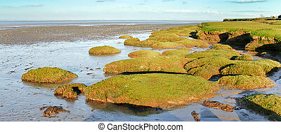 Solway firth salt marsh - Typical panoramic Scenic view of...