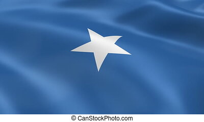 Somali flag in the wind. Part of a series.