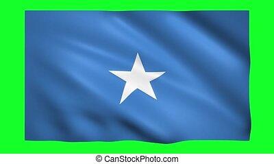 Somalia flag on green screen for chroma key