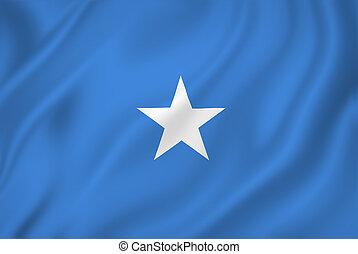 Somalia national flag background texture.