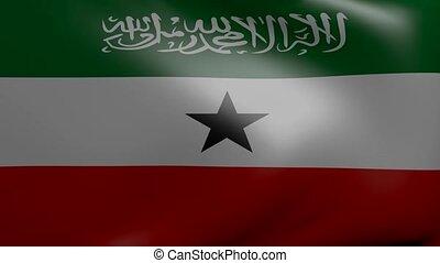 somaliland strong wind flag
