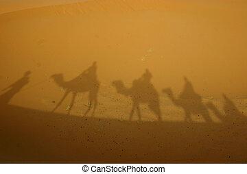 sombras, desierto