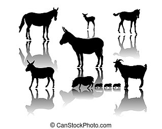 sombras, grupo, animal