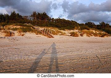 sombras, línea., cielo, árboles, padre, nubes, hijo, -,...