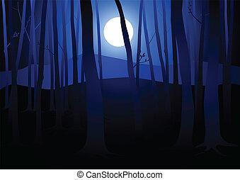 sombre, bois, pleine lune