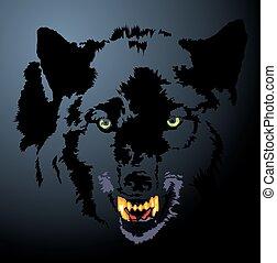 sombre, tête, loup, nuit