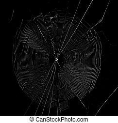 sombre, toile, araignés, fond