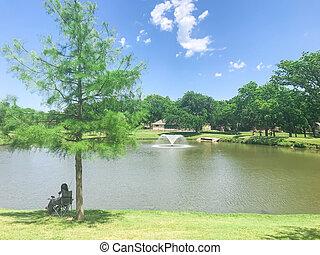 sombreado, tejas, fuente, flotar, parque, dama asiática, ...