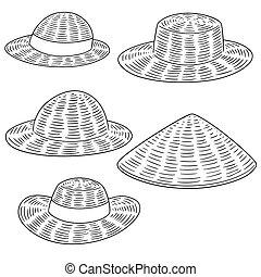 sombrero de paja, vector, conjunto