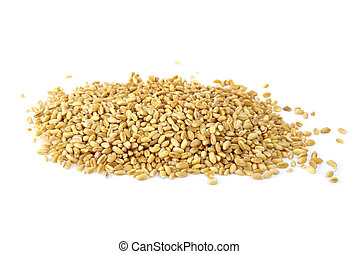 Some barley grains isolated on the white background