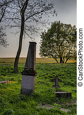 Some tombstones in an old abandoned and forgotten cemetery in Alsobikol, Hungary