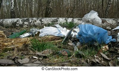 Some trash in birch forest, time lapse - Some trash in birch...