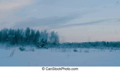 Somebody on snowmobile riding in the winter forest.