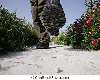 someone walking on a stony path with flowers at the side