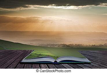 sommar, begrepp, avbild, skapande, bok, sidor, landskap