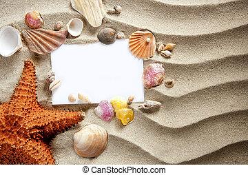 sommar, copyspace, sjöstjärna, skalen, utrymme, sand, tom