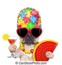 sommar ferier, hund