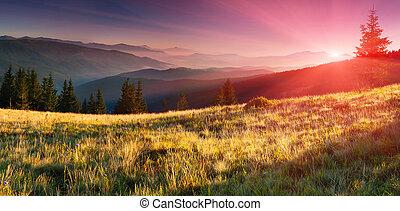 sommar, fjäll., soluppgång, landskap