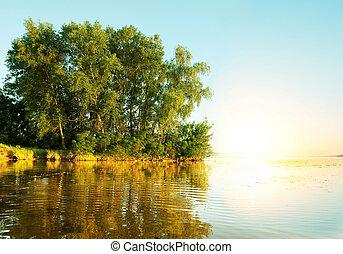sommar, flod