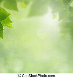 sommar, naturlig, bakgrunder, för, din, design