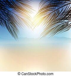 sommar, palm trä, bakgrund, 2807