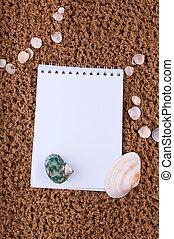 sommar, sjöstjärna, copyspace, skalen, sand tidning, tom, vita strand
