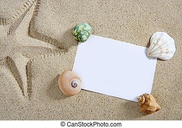 sommar, sjöstjärna, skalen, sand tidning, tom, strand, halvstop