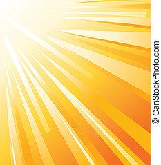 sommar, sol