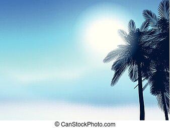 sommar, träd, palm, bakgrund, 2206