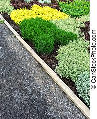 sommar, Trädgård, färgrik, specificera