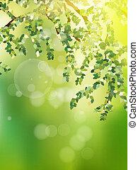 sommer, 10, eps, leaves., grün, zweig, frisch