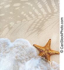 sommer, abstrakt, sandstrand, hintergrund