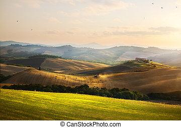 sommer, ackerland, toscana, landschaft, italy., rollen, ...
