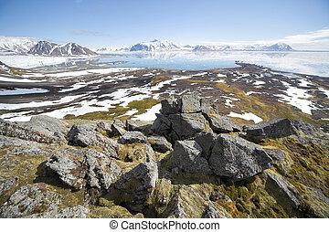 sommer, arktisch, landschaftsbild